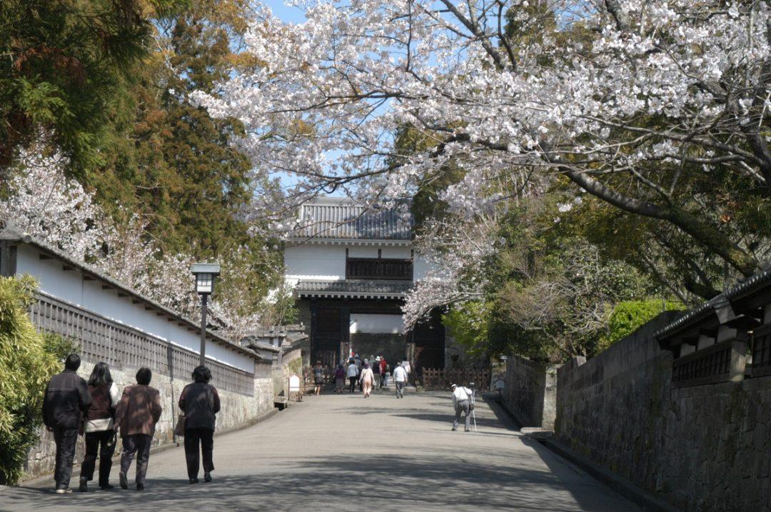 Obi Castle Town
